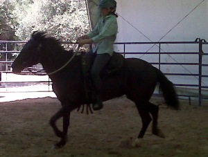Rociada and Erin at the canter