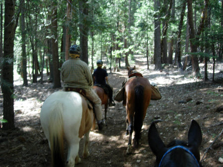Instructional trail ride