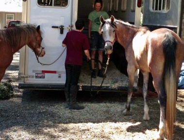 Quest at the trailer