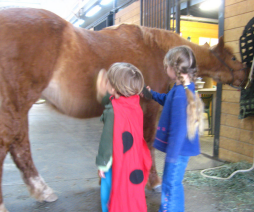 Cypress and Lucia grooming Tessa