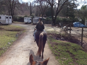 Trail prep at the ranch
