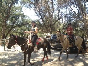 Cooling down with a trail ride
