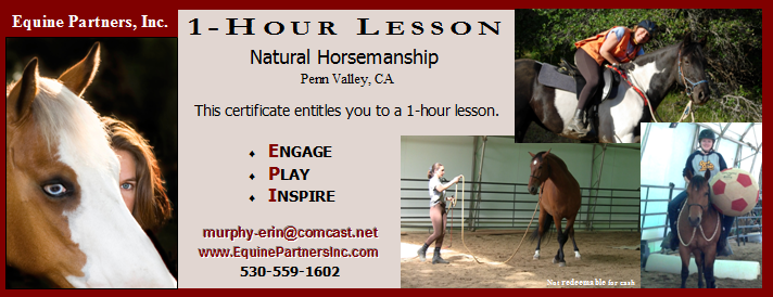 Adult lesson gift certificate
