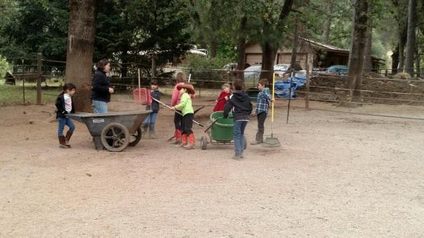 Horsekeeping 101